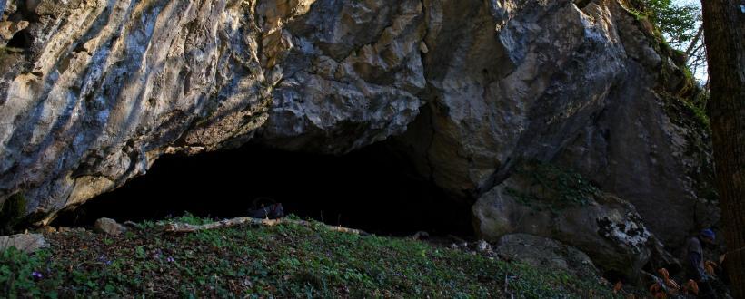 Portal Peștera Cuptorul Porcului - Foto: Stanescu Octavian